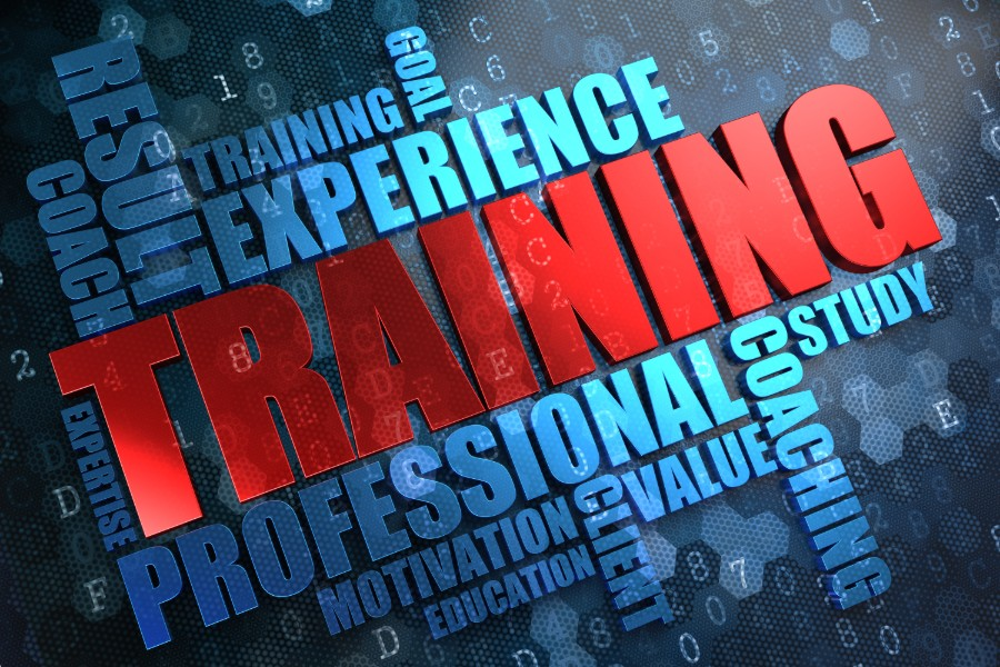 7 Key Features Your Employee Training Program Should Have